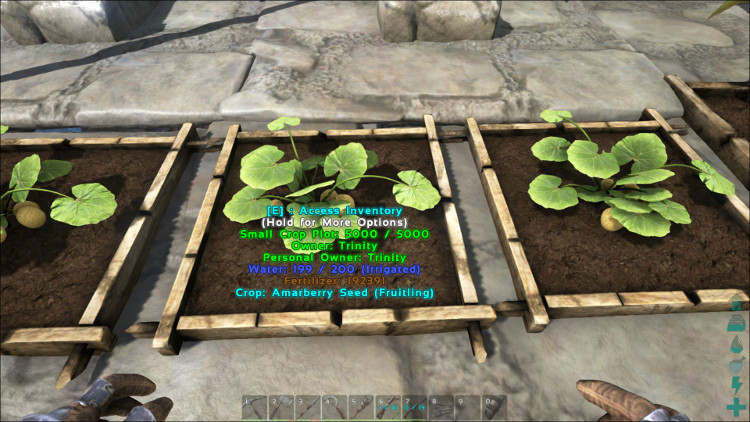 Amarberries can be grown in any size of crop plot in Ark. In this image the Amarberries are growing in a small crop plot.
