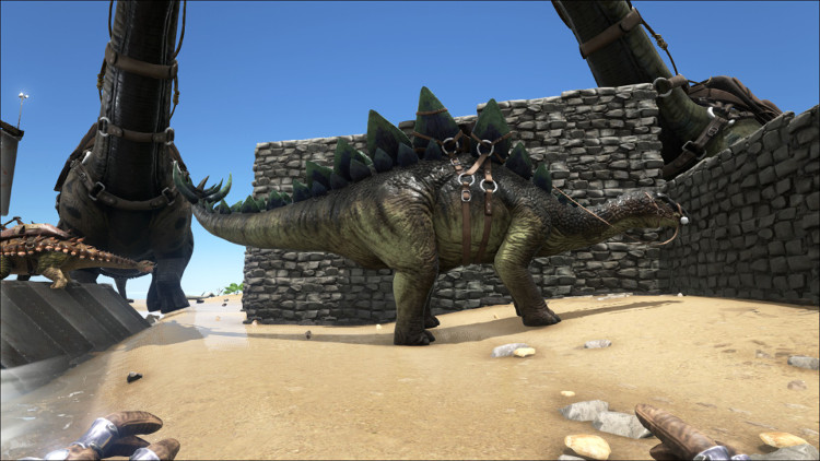 The Stego or Stegosaurus is a good Dino for harvesting berries and seeds in Ark. It is an easy early to mid-game tame.