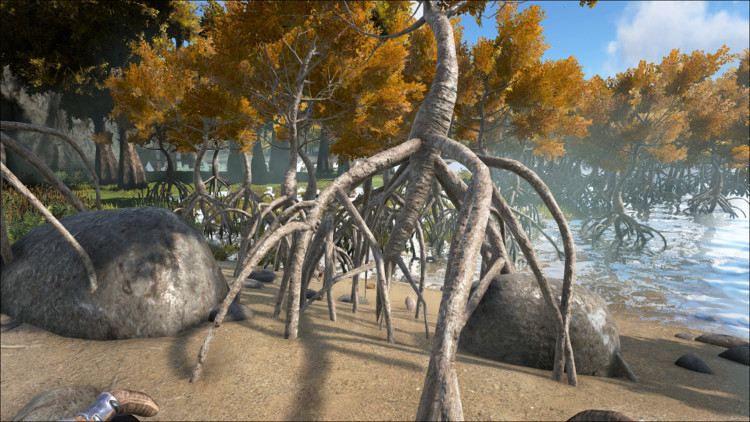 Rare Mushrooms - Ark: Survival Evolved