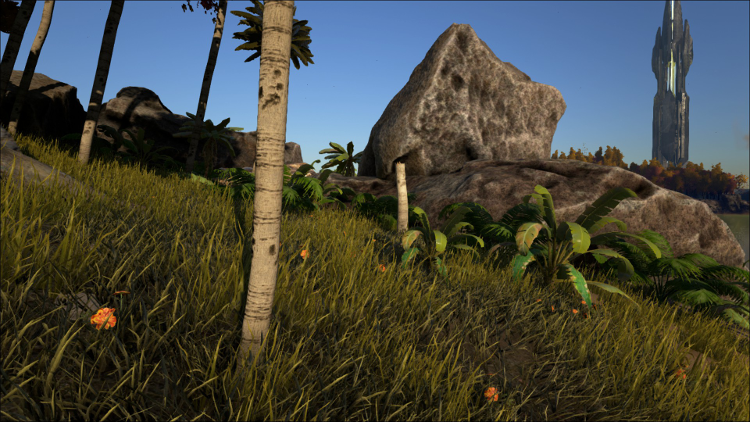 Rocks can be found almost everywhere in Ark. They are a primary building material.