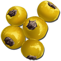 Amarberries are a common drop from harvesting most bushes in Ark.
