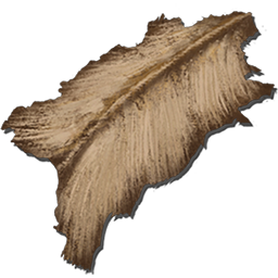 Hides are harvested from various animals in Ark and are used in a wide variety of crafting projects.